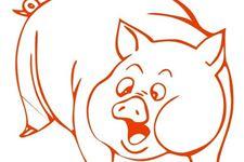 屬豬人的婚姻與命運