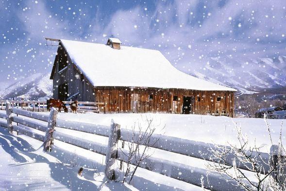 陰歷冬月是幾月,農歷的冬月是幾月