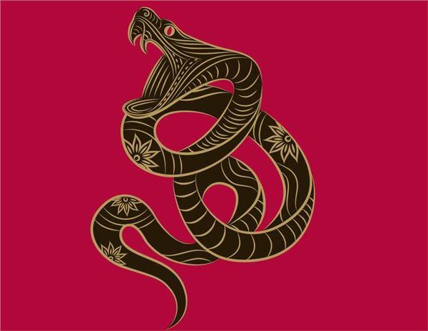 2018年属蛇的每月运势全年运程 属蛇的人2018年今年运势 帝神算命网