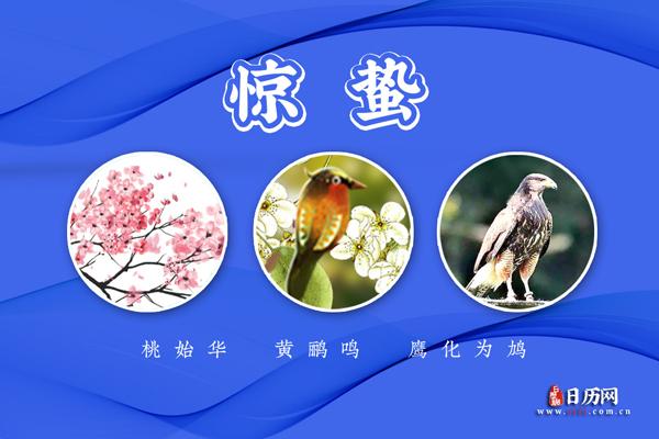 惊蛰三候:桃始华;黄鹂鸣;鹰化为鸠