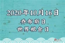 2020年10月16日是什么日子
