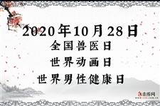 2020年10月28日是什么日子