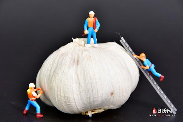 正宗腊八蒜的腌制方法