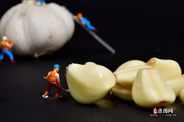 腊八蒜的功效与营养成分
