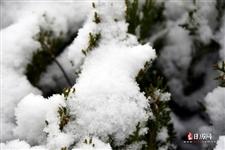 大寒是一年中最冷的一天吗