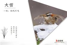 大雪三候:鹖鴠不鸣,虎始交,荔挺出