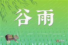 谷雨节气有哪些主要的农事活动