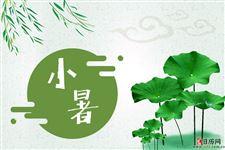 小暑吃什么传统食物?莲藕饺子必不可少